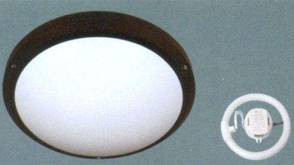 Đèn mâm ốp trần huỳnh quang Anfaco AFC-052B-22W-T6