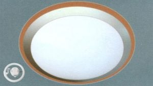 Đèn mâm ốp trần huỳnh quang Anfaco AFC-094-22W-T6